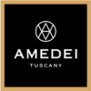 Amedei-Screen-Logo.jpg